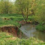 Catoctin Creek Stream Banks in Loudoun County VA