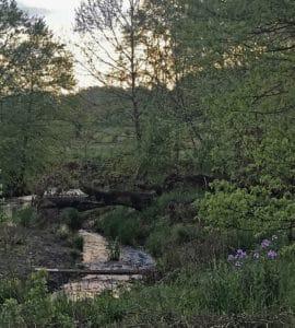 Foot bridge to Marker 9 on the Phillips Farm Trail in Loudoun County VA